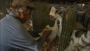 The annual Goose Fair in Devon dates back to the 12th century.