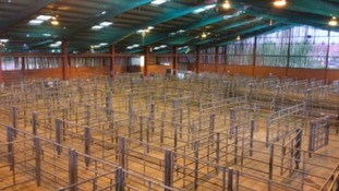 Plans to refurbish Louth cattle market approved