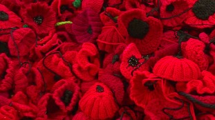 Knitted poppies to say thank you to the Fallen