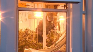 Gloucestershire Police perform series of drug raids to tackle suspected 'cannabis farms'
