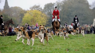 Vote could see all hunting banned from National Trust land