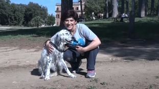 Italian woman wins right to use family sick leave to care for dog
