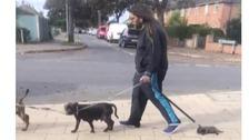 Puppy dragged along street in Norfolk