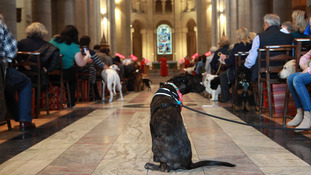 Congregation flocks to St Anne's for pet service