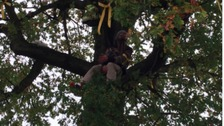 Sheffield tree campaigner will stay up Vernon 'all week'
