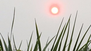 A picture of the red sun today at Wortwell in Norfolk.
