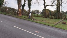 The scene of the crash in Co Fermanagh.