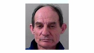Man who posed as a qualified vet jailed for three years