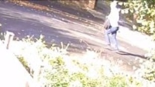 CCTV image following sexual assaults in south London