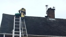 'Cat whisperer' firefighter in rooftop rescue