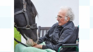 'Wish come true' after man with incurable cancer reunited with horse