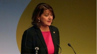 Wales must be ready for no deal Brexit says Plaid leader