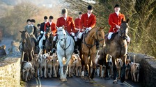 The fox hunt ban came into force in 2005.