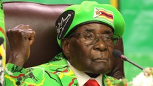 Mugabe's appointment as 'goodwill ambassador' criticised