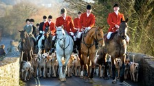 National Trust members to vote on banning 'trail hunting'