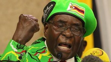 Mugabe as Goodwill ambassador is 'insult'