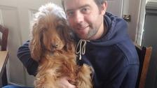 Much-loved Cocker Spaniel named Britain's cutest pub dog