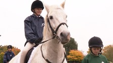 Charity setting up its own riding school for children