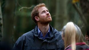 Prince Harry visits Brockholes
