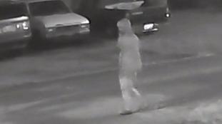 Tampa suspect