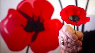 Poppy appeal: In Flanders Fields display at Media City