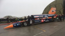 Bloodhound in Newquay