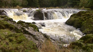 Cenarth Falls on the River Teifi