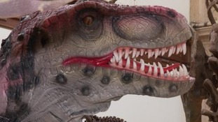 Popular dinosaur exhibition comes to an end