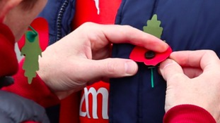 One in five adults unlikely to wear a poppy to mark Remembrance Day