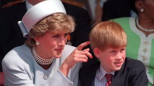 Prince Harry says Princess Diana is his 'ideal role model'