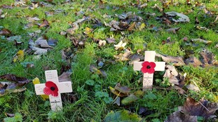 The poppies will be on display until after Remembrance Sunday