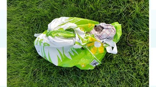 The supermarket bag in which the cat's body was found.