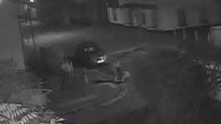 Shocking CCTV shows 79-year-old woman being dragged to the floor by robber in Ipswich