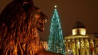 Christmas Tree having its lights switched on in Trafalgar Square, London.
