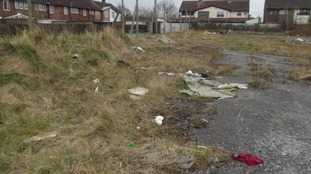Grow Speke will transform derelict land