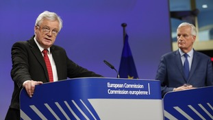 Brexit David Davis called for 'flexibility and pragmatism'