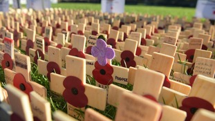 Field of remembrance at Cardiff Castle