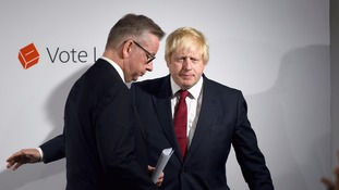 Michael Gove and Boris Johnson have been criticised for comments over the case.