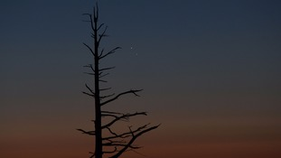 Jupiter and Venus appear side by side for early morning stargazers
