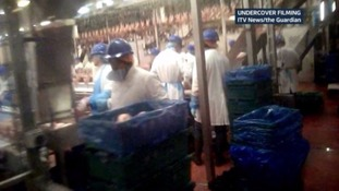 2 Sisters chicken factory problems 'not a one off', parliamentary inquiry finds