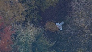 Some of the wreckage was visible in woodland.