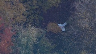 Wreckage from the plane was visible in the woodland