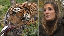 Zoo keeper's deadly disease triggered after saving animals abroad