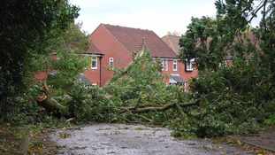 There is a warning that winds could be strong enough to bring down tree branches.