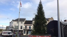 Loyalist group pressures council over Christmas tree