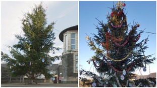 Caerphilly's 'ugly' Christmas tree gets a makeover