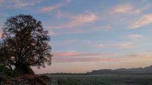 A frosty field in the morning