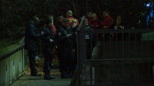 Emergency services at the scene where the tiger was shot.