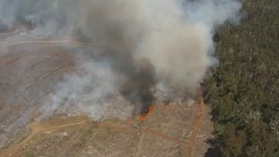 Aerial view of a bushfire in New South Wales, Australia