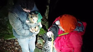 Dog stuck underground saved by mountain rescue team